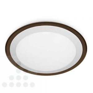 Plafondlamp LED 14 watt titanium rand